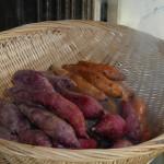 steaming-sweet-potatoes-1572028