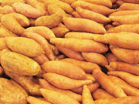 Batat (slatki krompir)